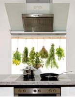 Picture of Herbs Hanging Splashback