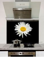 Picture of Daisy on black Splashback