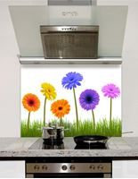 Picture of Multi Gerbera Splashback