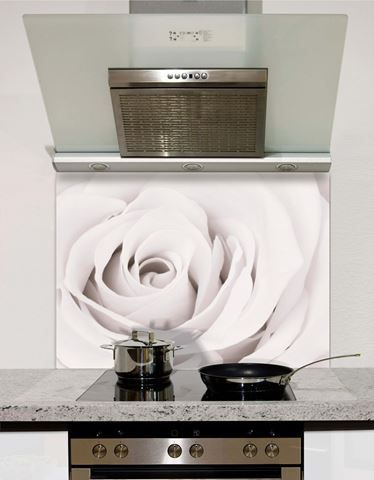 Picture of White rose close up Splashback