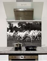 Picture of Wild horses Splashback