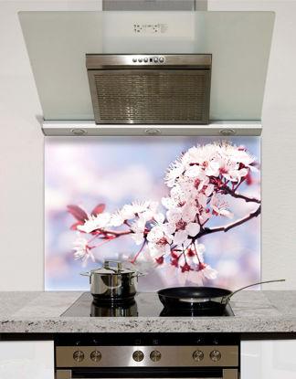 Picture of Cherry Blossom Splashback