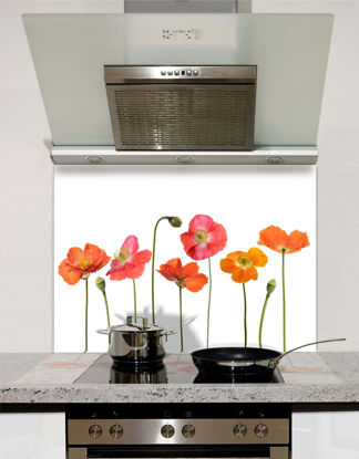 Picture of Line Of Poppies Splashback