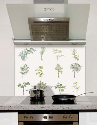 Picture of Spicy herbs Splashback