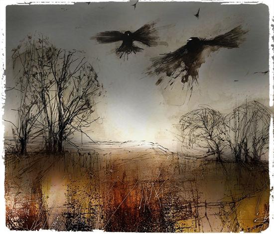 Picture of Murder of Crows ! Glass Kitchen Splashback